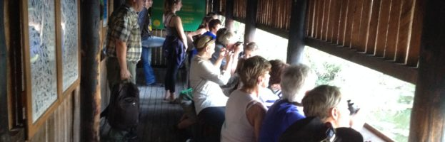 Olifants and Satara camps in the Kruger